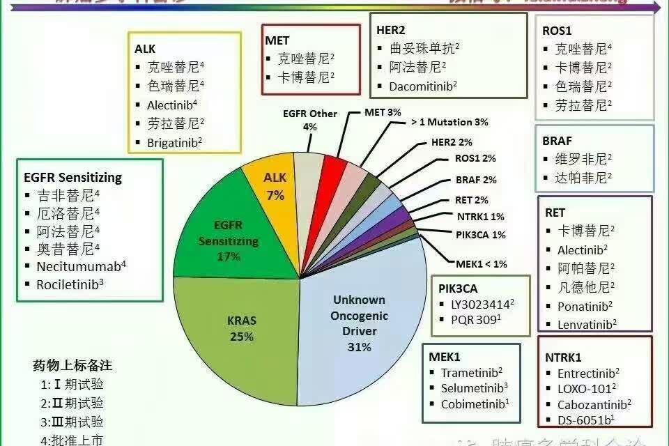 癌症晚期靶向治疗_哪种肺癌靶向治疗药物可以报销?-肺癌靶向治疗药物有哪些