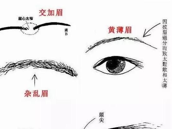 面相分析_鸿轩道长:面相中的六害眉分析!