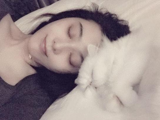 范冰冰真是个睡美人和猫?#20154;?#30456;网友:李?#31354;?#30340;么
