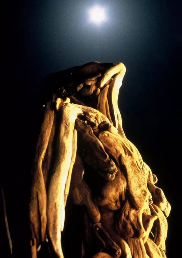 人体艺术之夜_【人体艺术】漂流木