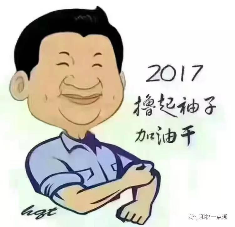 撸流人_2017,我们撸起袖子加油干,重新找回属于二中人的骄傲和自豪!