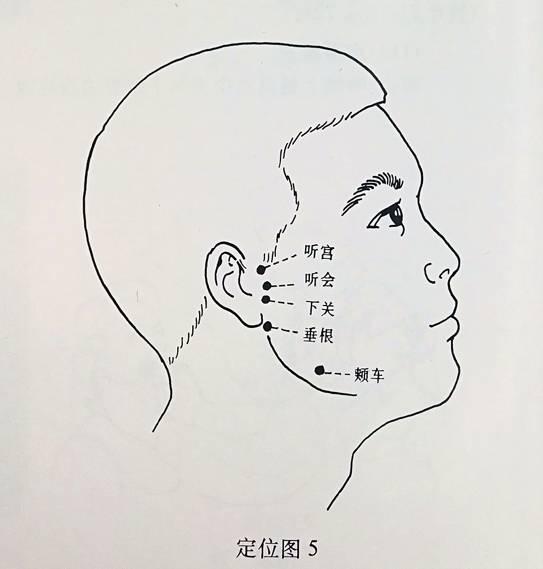 千屄图_千字解剖 | 从眼保健操到头面部解剖