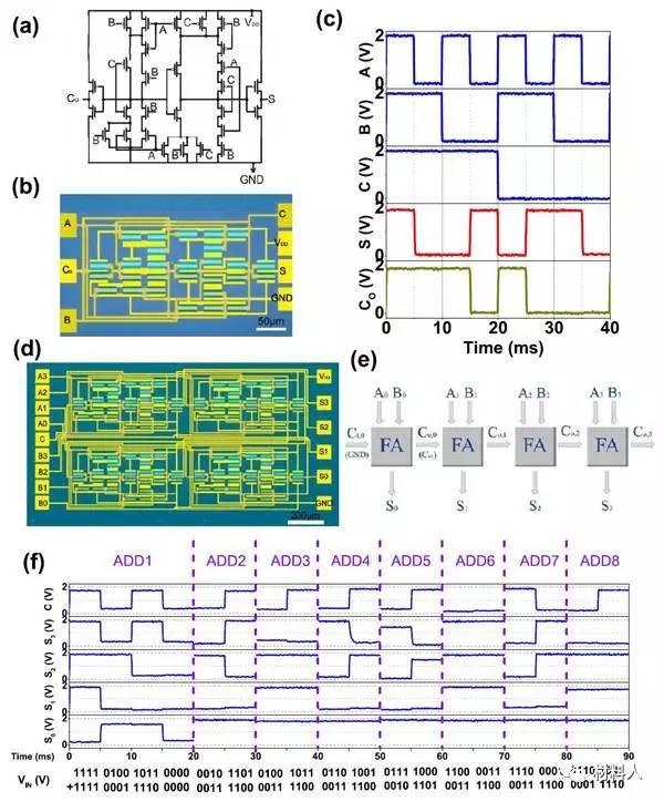 露逼做爱囹�a_acs nano:高性能互补晶体管及基于碳纳米管的中等规模
