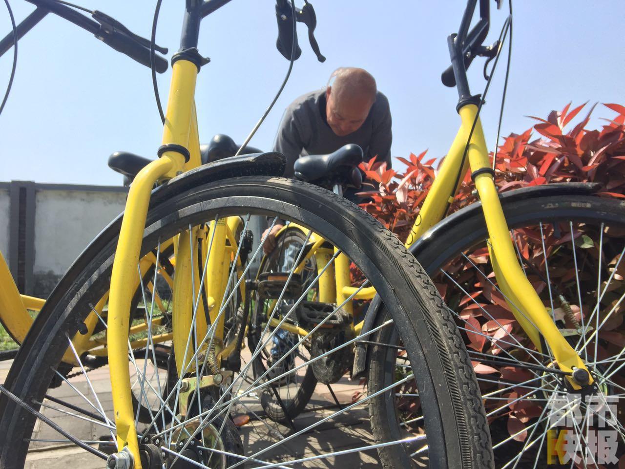 预计王大爷家今年_王大爷今年六十多岁了,义务维修共享单车,已经十多天了.