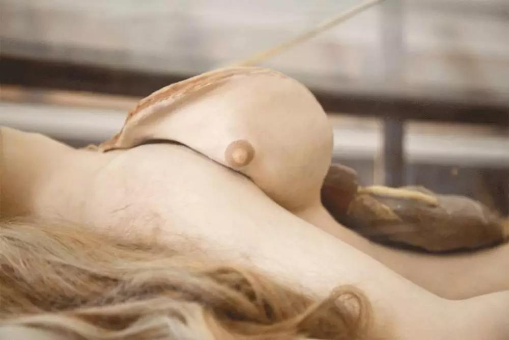 人体艺术模型_制作解剖模型不一定要使用蜡,但因蜡经处理后与人体有着相近的色度
