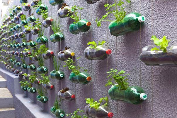 diy塑料瓶創意圖片