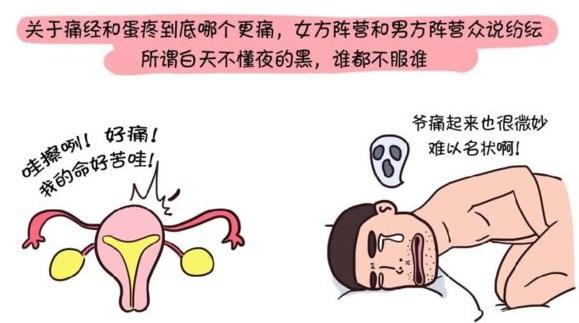 蛋疼的原因之精索静脉曲张!!!(转载)
