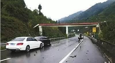 """高速開車遇見狗,是撞還是躲?90車主都會做錯!"""""""