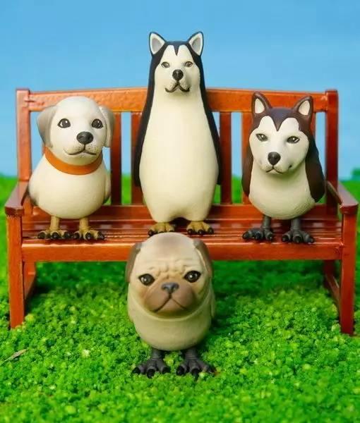 四喜鸟��h�_新买回家的哈士企鹅,求鉴定。