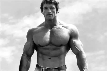 训练计划, 胸肌, 增肌, 力量训练