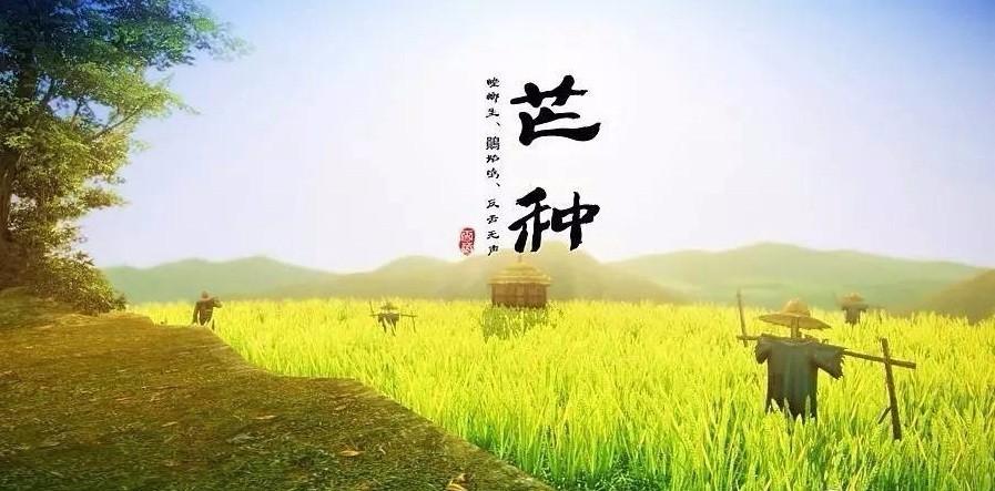 芒种季节_【养生】今日芒种,闷热暑气现,养生多攻略~