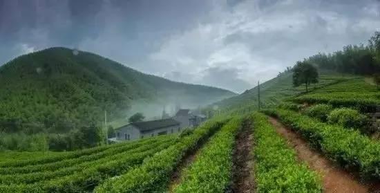 【乡情】最简单的快乐时光,是曾经住过的乡村