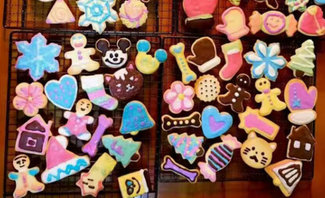 惠州diy蛋糕店六月佳人diy烘焙:提拉米蘇蛋糕diy圖片